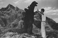 Godzilla and a Man Standing on a Mountain.jpg