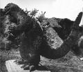 KKVG - Godzilla On A Wooden Board.jpg