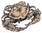 Unclean-crab.png