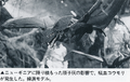 Nostradamus - Giant Bat 02, Pictorial Book of Godzilla p137.png