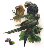 Carrion Parrots.png