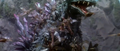 Godzilla vs. Megaguirus - Godzilla keeps getting swarmed.png