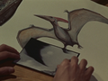Pteranodon compare with Rodan.png