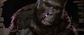 Wounded Kong.png