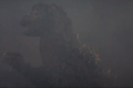 Godzilla bleeding on the cheek.png