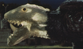 Gamera - 5 - vs Jiger - 35 - Shiny Gamera with see-through skin an visible bones.png