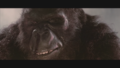 Kong Gets His Revenge.png
