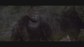 Kong is Lonely.png