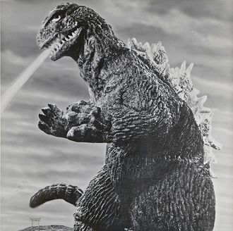 The KingGoji in King Kong vs. Godzilla
