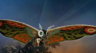 Mothra Leo Wikizilla The Kaiju Encyclopedia